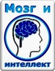 Мозг и интеллект
